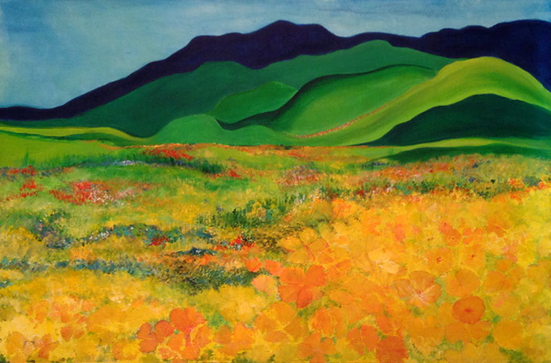 Amy Richardson - California Wildflowers