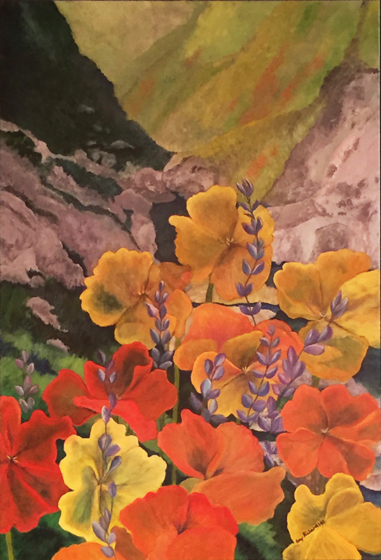 Amy Richardson - Kern Canyon after the rains